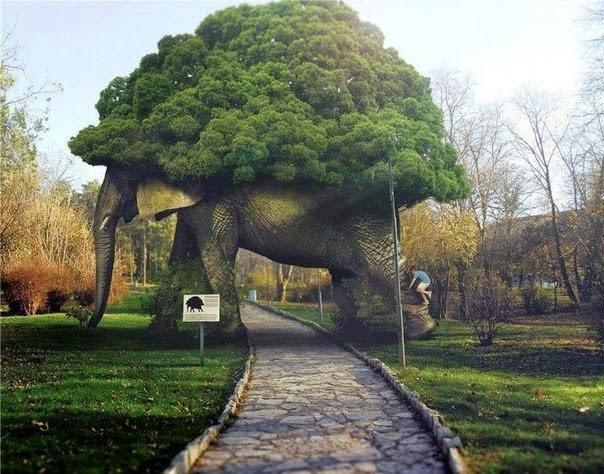 Дерево - шедевр, сад Folly, Великобритания