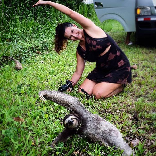 animals-yoga-poses-101-57bef11c0e62a__605
