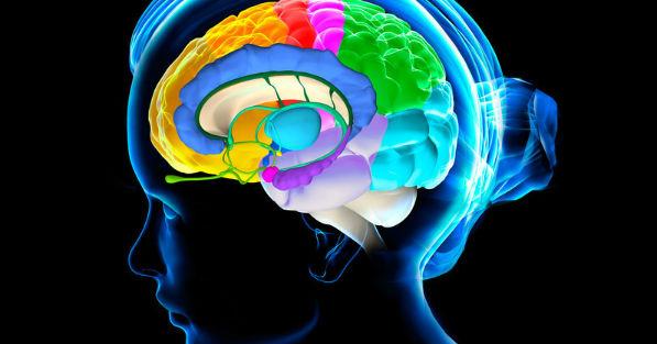 content_cervello-d2emab__econet_ru