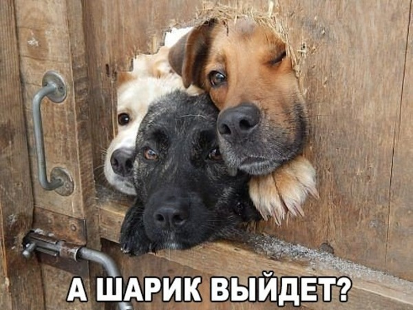 imgonline-com-ua-resize-o0fo4mswcw