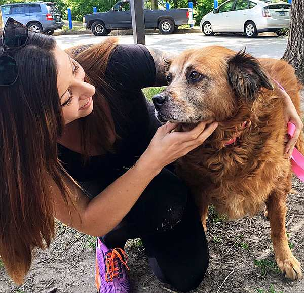 oldest-adopted-dogs-34-57ab1e82dde6d__605