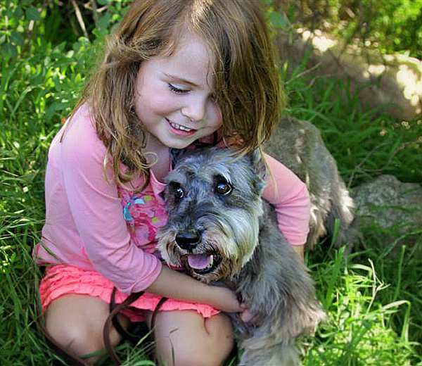 oldest-adopted-dogs-57aacf996022e__605