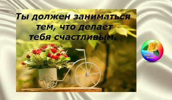 14222347_927152300748932_2901021005189595005_n-1