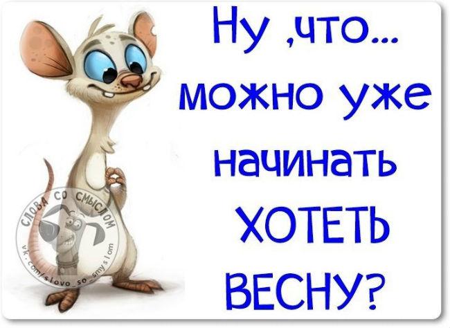 1425023978_kartinkipro_vesnu-1