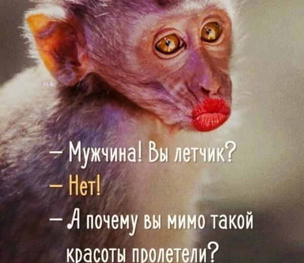 imgonline-com-ua-resize-bo8f4xqx4rp