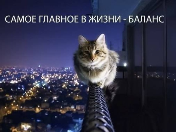 imgonline-com-ua-resize-ntadtfcwnasq9oz