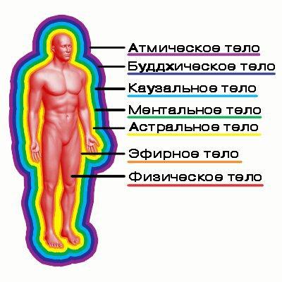 original_wpid-tonkie_tela_cheloveka