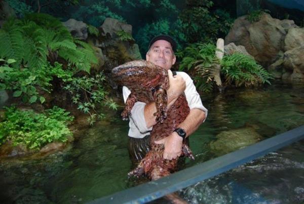 Невероятно громадные животные, существующие на самом деле