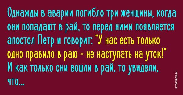 1480836822_sffb_shb3a_ytki