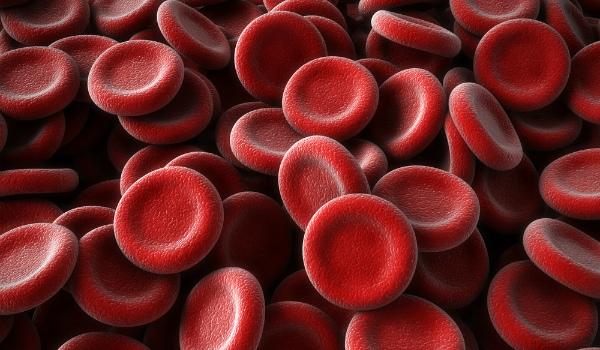 Что значит ваша группа крови для вашей судьбы?