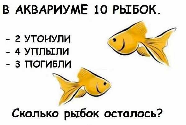 s-b4d14e0e77fbc6c3908edfab6e51dbd500d542e6-623x420