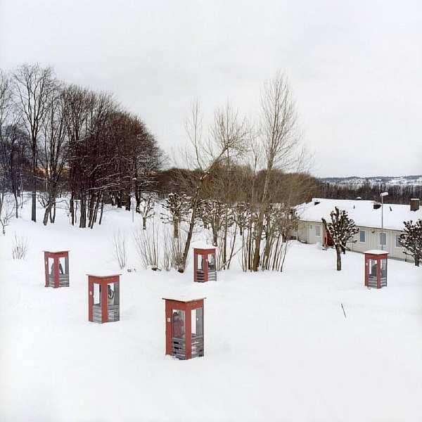 Не тюрьма для преступников, а райское местечко в Норвегии