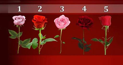 Роза, которую вы выбрали расскажет, когда сбудется ваше желание!