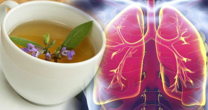 Эффективные натуральные средства от воспаления легких, всем на заметку, чтобы не потерять